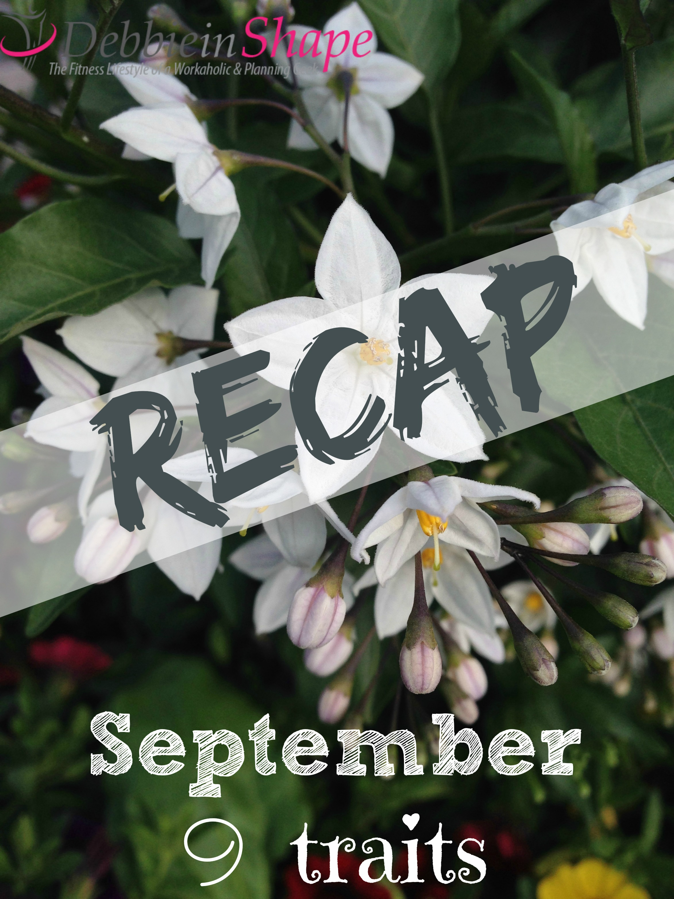 Recap : September 9 Traits3 min read