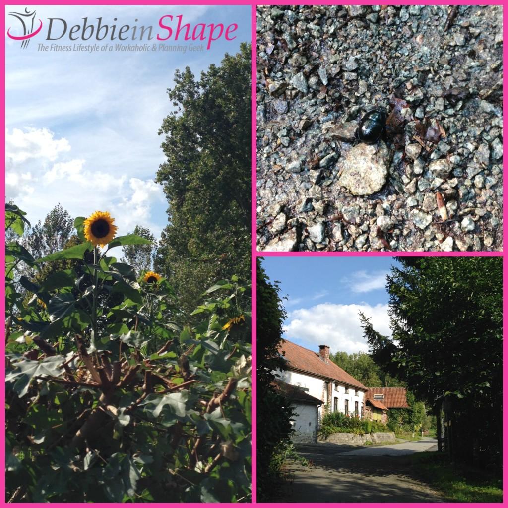 Neigembos Debbie in Shape