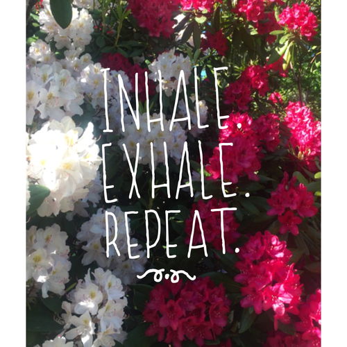 Yoga: Inhale. Exhale. Repeat.